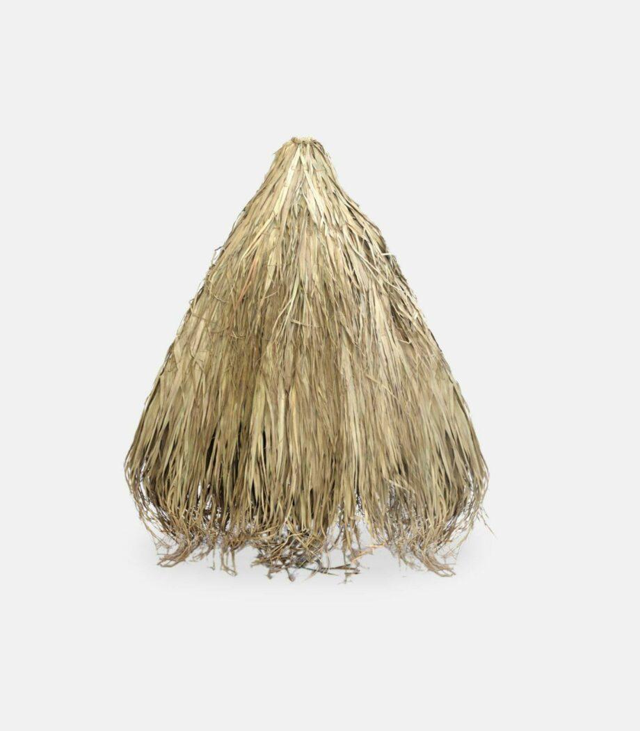 tropiko kapelo fun palm